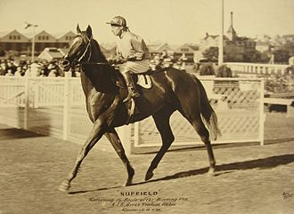 Australian Derby - Image: NUFFIELD 1938 AJC SIRES PRODUCE STAKES HAROLD BADGER
