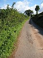 Narrow road to Tredunnock Farm - geograph.org.uk - 991413.jpg