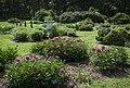 National Arboretum in June (23277881950).jpg