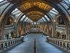 Natural History Museum Main Hall, London, UK - Diliff.jpg
