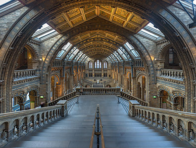 A (gracefully) tone mapped, stitched high resolution wide angle view of the Grand Hall at the Natural History Museum in London.