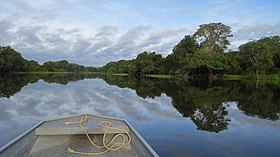 Nature-forest-boat-lake-river-canal-1175047.jpg