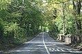 Near Durrow, County Laois - geograph.org.uk - 1872164.jpg