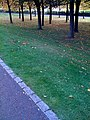 Near Glasgow Green (4019522684).jpg