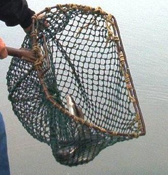 Hand net - Landing net
