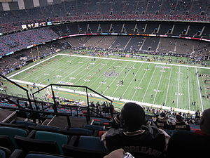New Orleans 391 in the Superdome.jpg