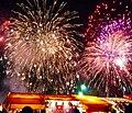 Nishi-Nippon Ohori Fireworks Festival 2009.jpg