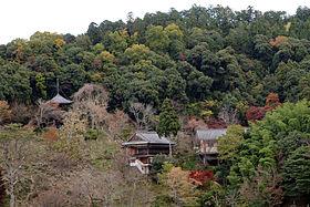 Nyoirinji Yoshino Nara01n4272.jpg
