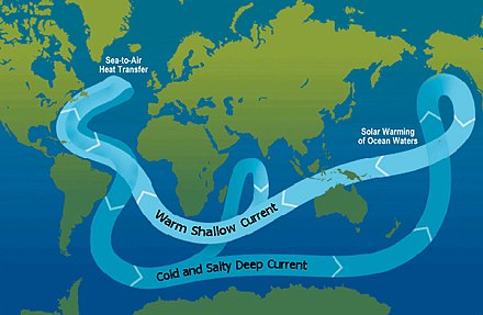 A schematic of modern thermohaline circulation. Tens of millions of years ago, continental-plate movement formed a land-free gap around Antarctica, allowing the formation of the ACC, which keeps warm waters away from Antarctica. Ocean circulation conveyor belt.jpg
