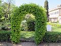 Orto botanico, fi, arco topiario.JPG