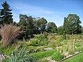 Oslo Botanical Garden - IMG 9047.jpg