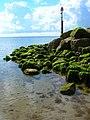 Outfall, Pagham Beach - geograph.org.uk - 501043.jpg