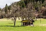 Pörtschach Winklern Am Kåte Dörrkasten in Streuobstwiese 01042018 2811.jpg