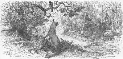 Kruk I Lis 1876 Wikiźródła Wolna Biblioteka