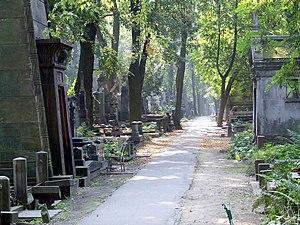 Powązki Cemetery - Image: PL Warsaw Stare Powązki alejka cmentarza 1