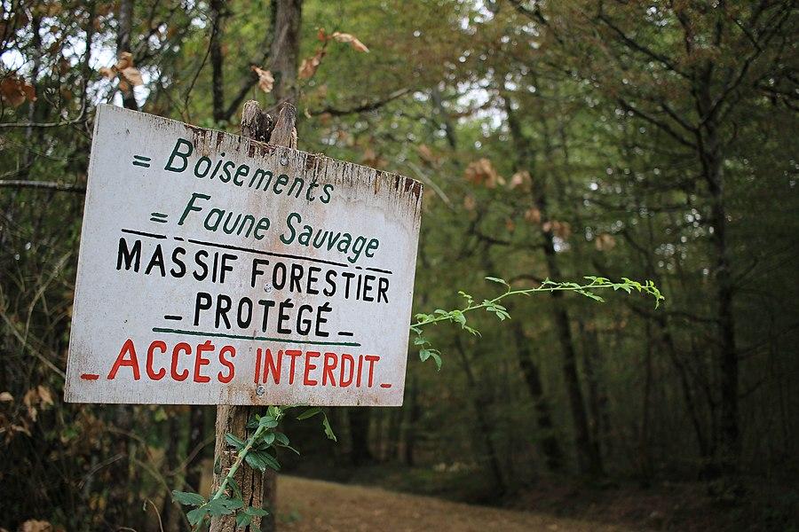Pancarte usée Accès interdit Massif forestier protégé.jpg