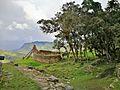 Panoràmica des de les ruïnes de Kuelap.jpg