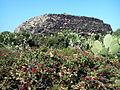 Pantelleria Sese grande o Sese del Re (1017176924).jpg