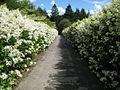 Parc Floral de Haute-Bretagne entrance.jpg