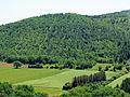 Parc naturel régional des Causses du Quercy 2210.JPEG