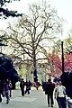 Paris, Jardin del Plantes 1976 06.jpg