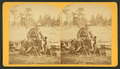 Park hotel, Manitou Park. (A hunter with his gun, dog and a wild fowl he has shot.), from Robert N. Dennis collection of stereoscopic views.png