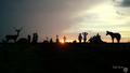 Parque-Nacional-das-Emas- 'Por do sol no portão Jaculba'.png