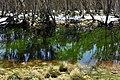 Parque Nacional Alpino 17.jpg