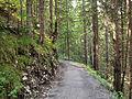 Path between Biberwier and Lermoos.jpg