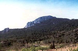 Sierra del Toro - Peñaescabia or Penya d'Escàbia (1 326 m)