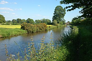 English: Peace & serenity on the Llangollen Canal
