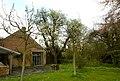 Perelaar in bloei op het domein Speelhoven te Aarschot - 372662 - onroerenderfgoed.jpg