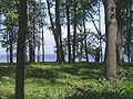 Peterhof garden 614px.jpg