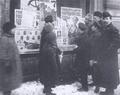 Petrograd voters 1917.png