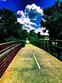 Photo-OutdoorImage-AtSilverComet06.jpg