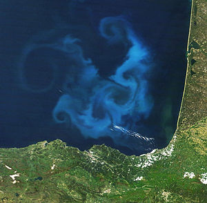 Phytoplankton bloom in the Bay of Biscay. NASA...