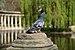 PigeonMonceau.jpg