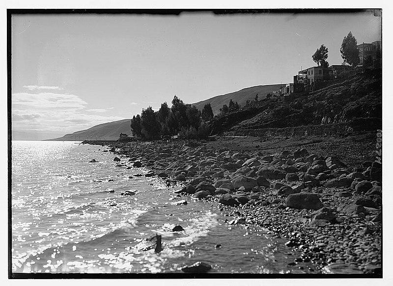 חוף הכנרת