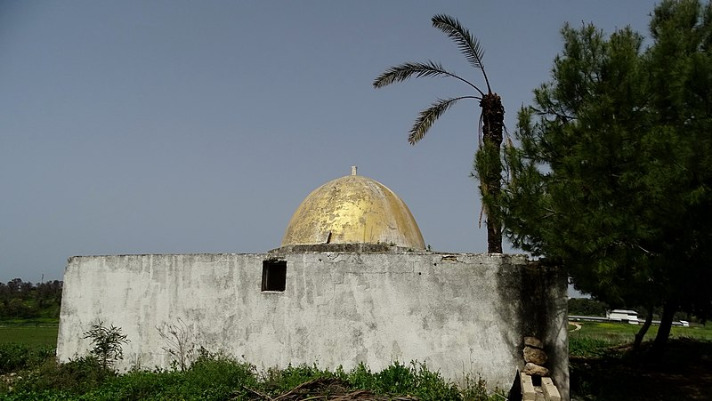 קבר שיח גמאל א דין אלעקושי