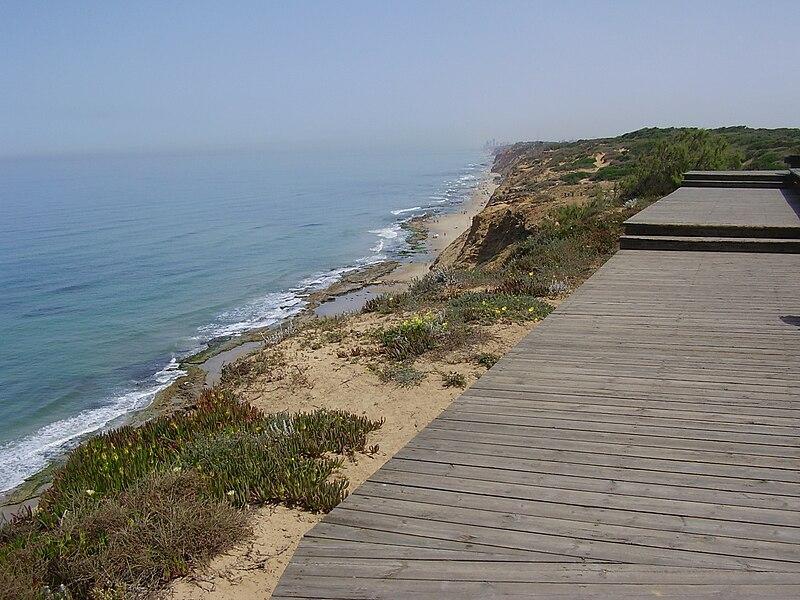 מצפור חוף השרון