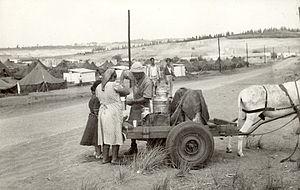 Ma'abarot - Milk distribution at a ma'abara