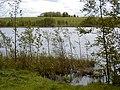 Pilsētas ezers pie Brizules 2001-05-20 - panoramio.jpg