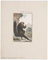 Pithecia leucocephala - 1798-1803 - Print - Iconographia Zoologica - Special Collections University of Amsterdam - UBA01 IZ20200224.tif