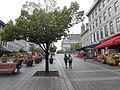 Place Jacques-Cartier 137.jpg