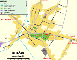 Location of Kurów