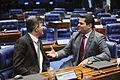Plenário do Senado (25101316222).jpg