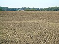 Ploughed Field - geograph.org.uk - 534950.jpg