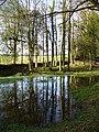 Pond by Lye Wood - geograph.org.uk - 303078.jpg
