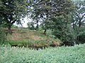 Pond near Upper South Farm 1 - geograph.org.uk - 1246780.jpg
