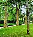 Portugal Mafra Jardim do Cerco (472670323).jpg